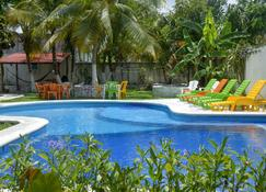 Amigos Hostel Cozumel - Cozumel - Pool