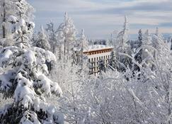 Hotel Crocus - Strbske Pleso - Outdoor view
