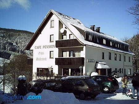Pension Waldesruh - Willingen (Hessen) - Gebäude