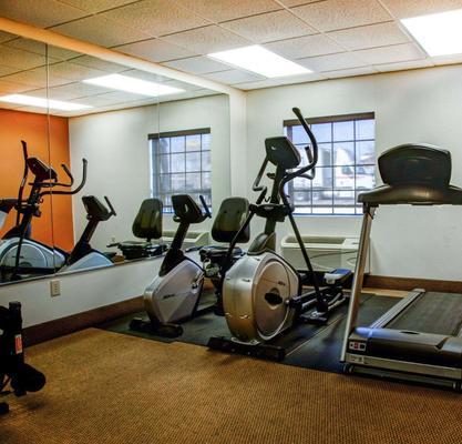 Comfort Inn Bessemer Birmingham South - Bessemer - Salle de sport