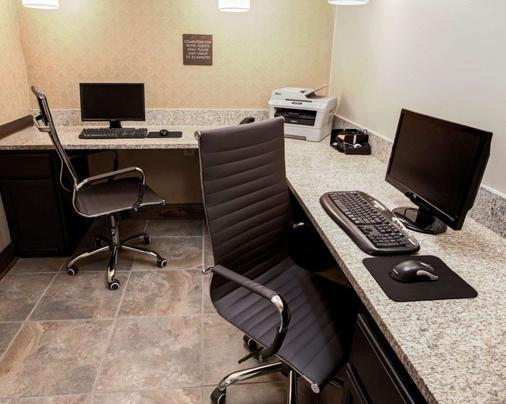 Comfort Suites - Georgetown - Business centre