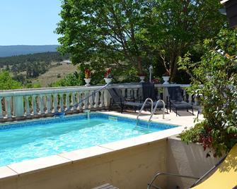 Le Vieil Amandier - Trigance - Pool
