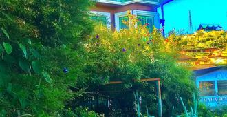 海蒂之家飯店 - 奴娃拉伊利雅 - 室外景