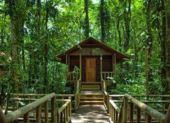 Evergreen Lodge - Tortuguero - Outdoor view