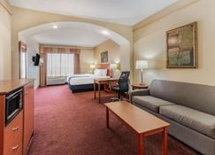 La Quinta Inn & Suites by Wyndham Hobbs - Хоббс - Спальня