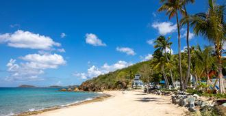 Bluebeard's Beach Club - Saint Thomas Island - Beach