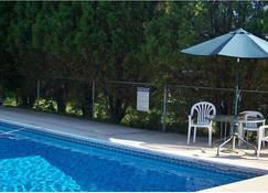 Mount Whittier Motel - Center Ossipee - Pool