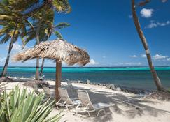 Colony Cove Beach Resort by Antilles Resorts - Christiansted - Beach