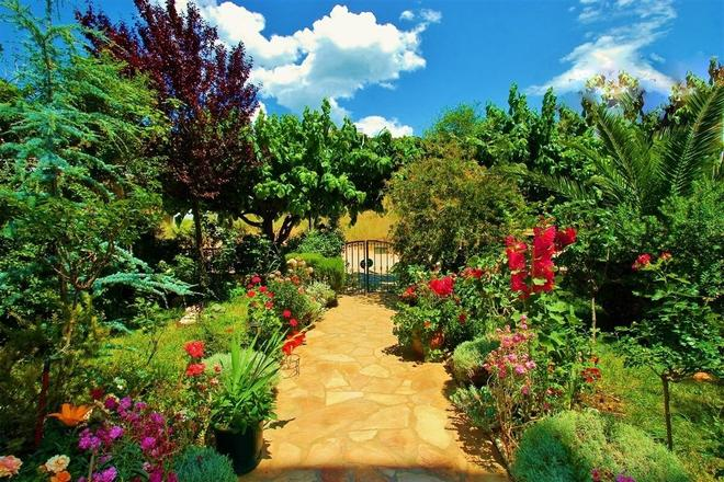 Sagini Hotel - Loutra Edipsou - Outdoors view