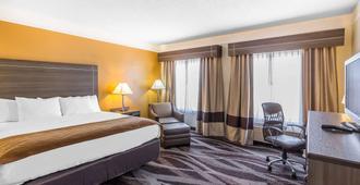Comfort Inn I-10 East Near At&t Center - סן אנטוניו - חדר שינה