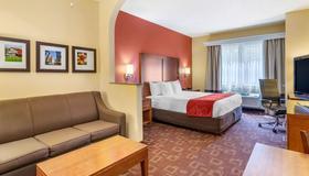 Comfort Suites - Near the Galleria - יוסטון - חדר שינה