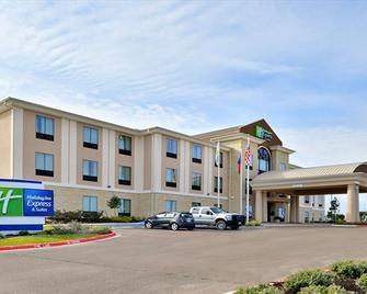 Holiday Inn Express & Suites Schulenburg - Schulenburg - Gebäude