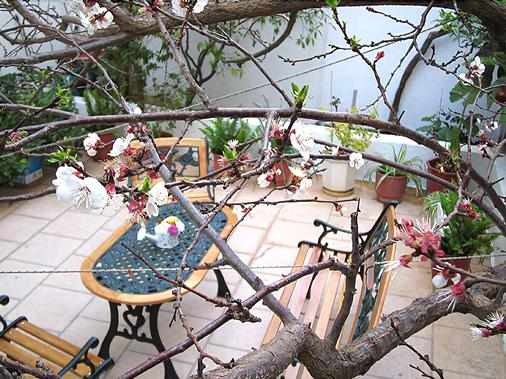 Hotel Doxa - Agios Nikolaos - Balcony