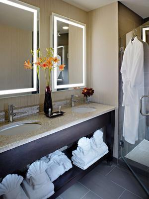 Best Western Plus Hawthorne Terrace Hotel - Chicago - Phòng tắm