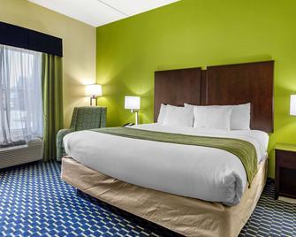 Comfort Inn Athens - Athens - Bedroom