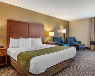 Comfort Inn Charlotte - Charlotte - Slaapkamer