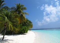 Equa Reef Maldives - Addu City - Playa