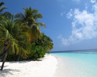 Equa Reef Maldives - Addu City - Beach