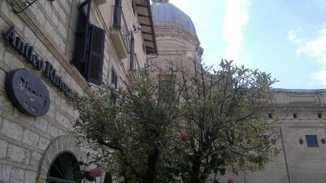 Porziuncola - Assisi - Udsigt