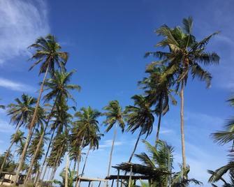 Stumble Inn Eco Lodge - Elmina - Outdoors view