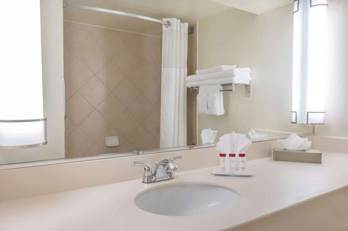 Ramada by Wyndham Las Cruces Hotel & Conference Center - Las Cruces - Bathroom