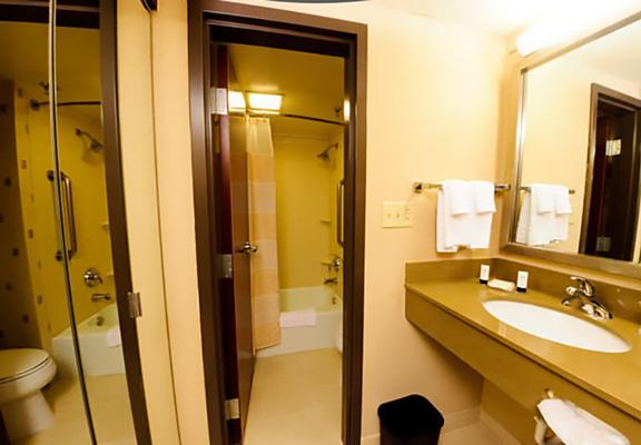 Fairfield Inn & Suites By Marriott Dallas Dfw Airport South/Irving - Irving - Baño