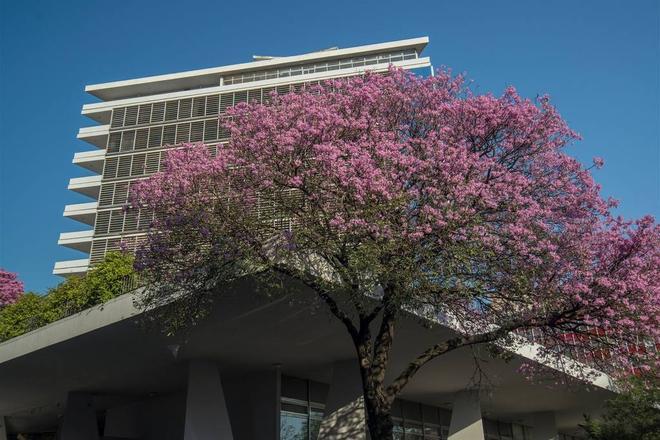 Esplendor Hotel Guaraní - Asunción - Edificio
