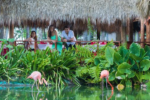 Natura Park Beach Eco Resort & Spa - Punta Cana - Vista del exterior