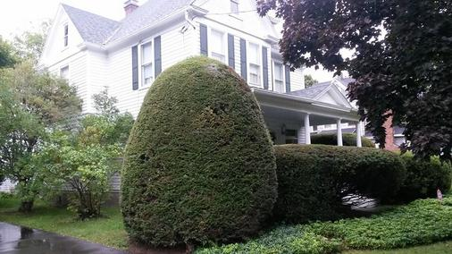Park House Bed And Breakfast - Binghamton - Rakennus