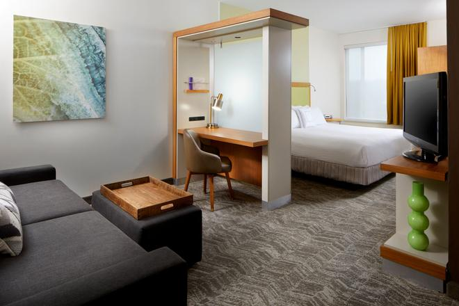 SpringHill Suites by Marriott Pittsburgh Bakery Square - Pittsburgh - Habitación