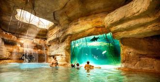 亞特蘭蒂斯海灘飯店 - 拿騷 - 游泳池