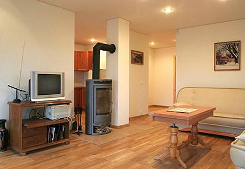 Love Island Guesthouse - Druskininkai - Living room