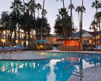 Hotel Adeline - Scottsdale - Pool