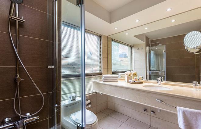 埃爾博斯克廣場埃布羅酒店 - 聖地牙哥 - 聖地亞哥 - 浴室