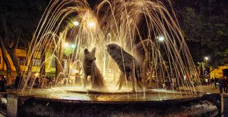 Calle Berlin - Mexico City - Attractions
