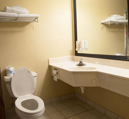 South Shore Inn - Sandusky - Bagno