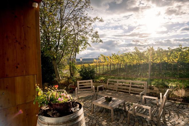 Wein-Gut Hutter - Krems an der Donau - Patio