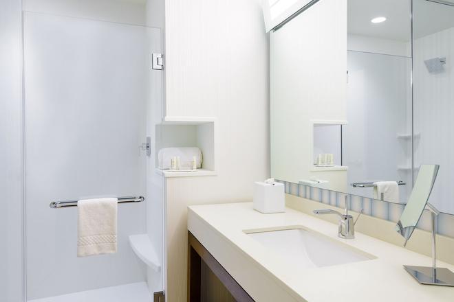 萬怡酒店 - 布法羅市中心/卡納爾賽德 - 水牛城 - 水牛城 - 浴室