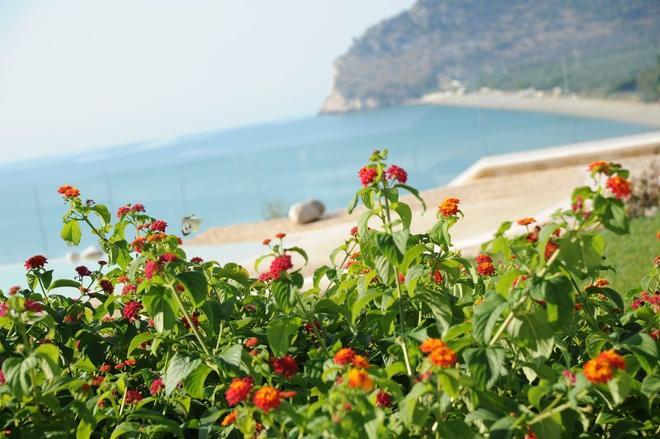 Hotel Residence Il Porto - Mattinata - Playa