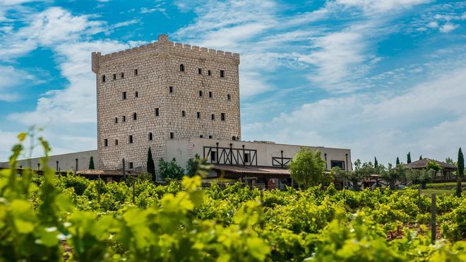 Chateau Pago De Cirsus - Ablitas - Building