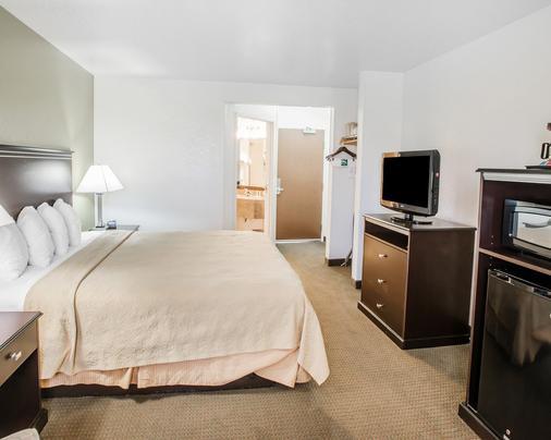 丹佛國際機場品質酒店及套房 - 丹佛 - 丹佛 - 臥室
