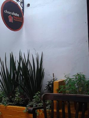Chocolate Hostel - Bogotá - Lobby
