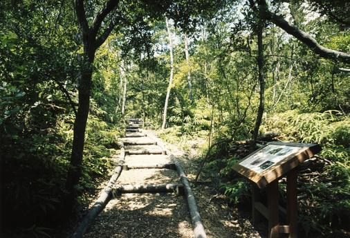 Miyako Resort Okushima Aqua Forest (Ex Hotel Kintetsu Aquavilla Ise Shima) - Shima - Cảnh ngoài trời