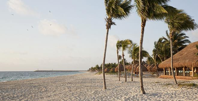 Finest Playa Mujeres by The Excellence Collection - Cancún - Beach