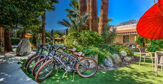 Dive Palm Springs - פאלם ספירנגס - נוף חיצוני
