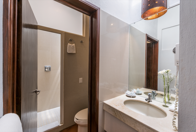 卡薩總督酒店 - 瓜納華多 - 瓜納華托 - 浴室