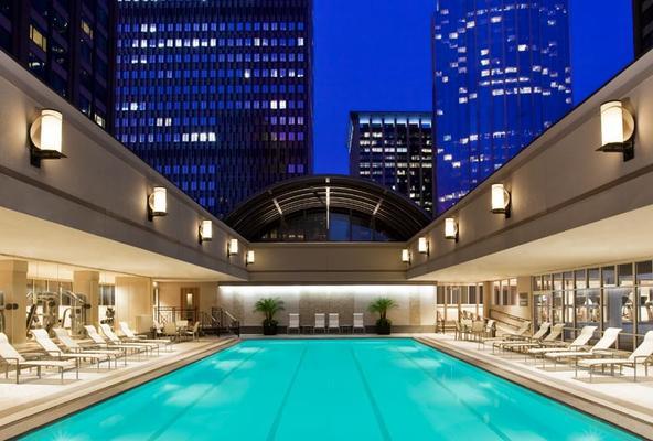 波士頓喜來豋酒店 - 波士頓 - 游泳池