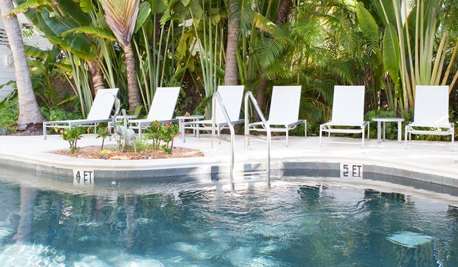 Paradise Inn Key West-Adults Only - Key West - Uima-allas