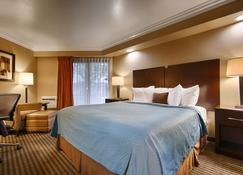 Best Western PLUS Wine Country Inn & Suites - Santa Rosa - Bedroom