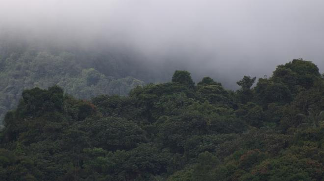 Biohostal Mindo Cloud Forest - Mindo - Outdoors view